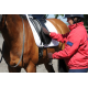 HiWither velvet saddlepad with braid (SP24 DR)