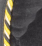 Black Velvet with black/yellow/cream braid